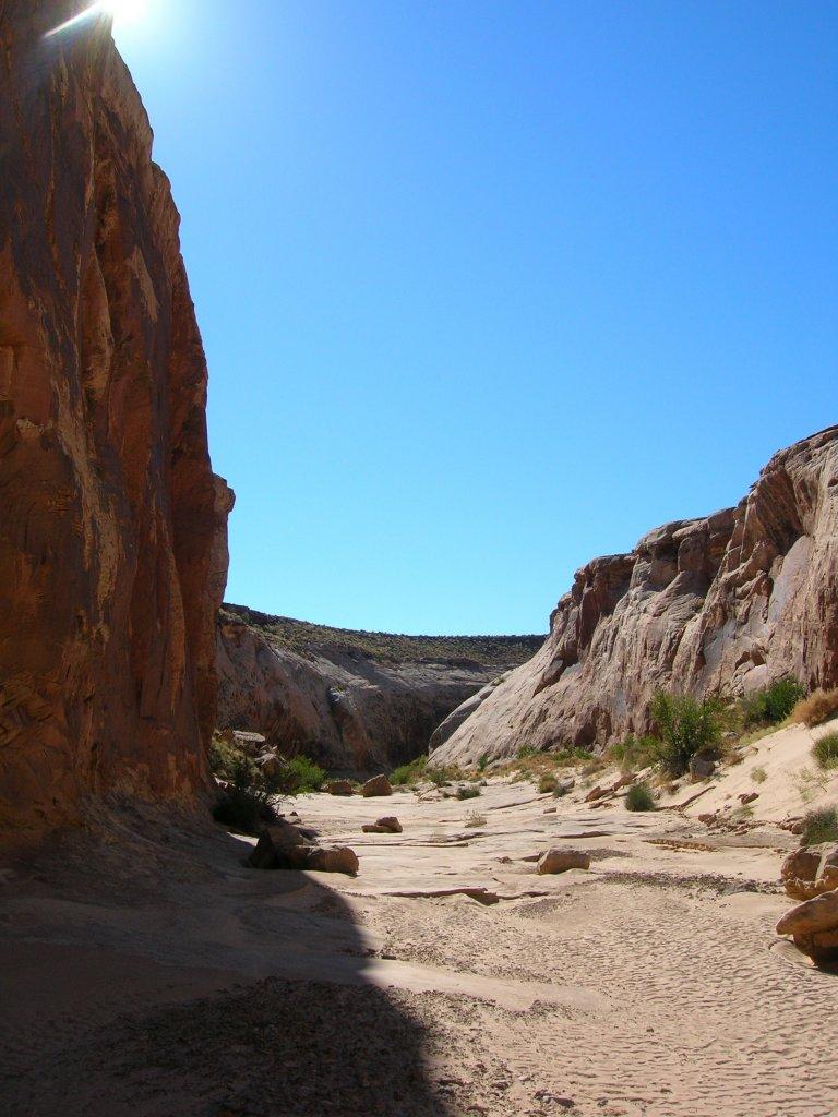 the canyon 3.jpg
