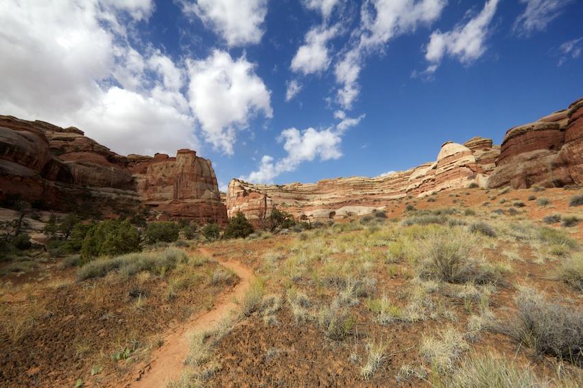 the-maze-canyonlands-12.jpg