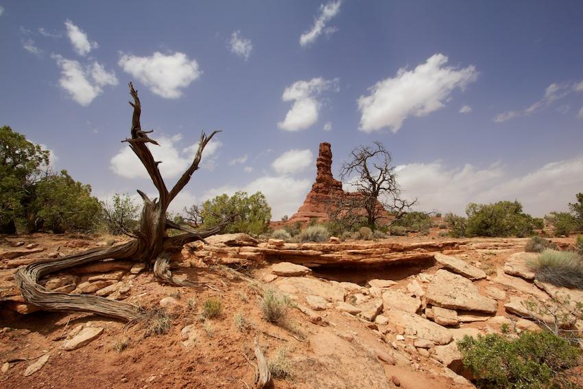 the-maze-canyonlands-28.jpg