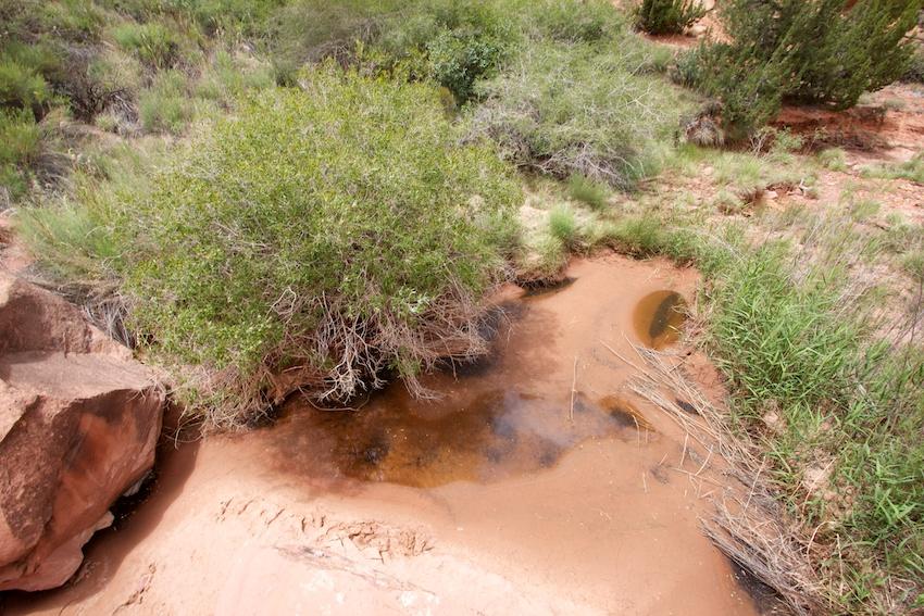 the-maze-canyonlands-55.jpg