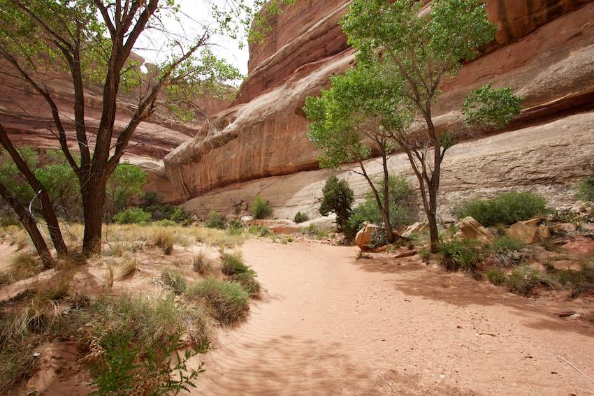 the-maze-canyonlands-56.jpg