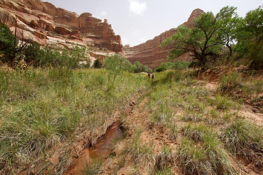 the-maze-canyonlands-58.jpg
