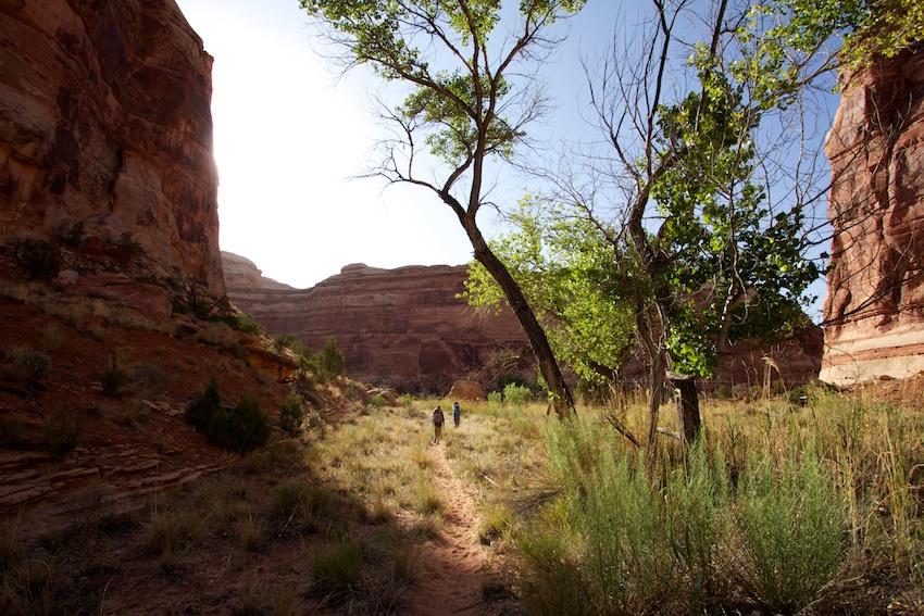 the-maze-canyonlands-72.jpg