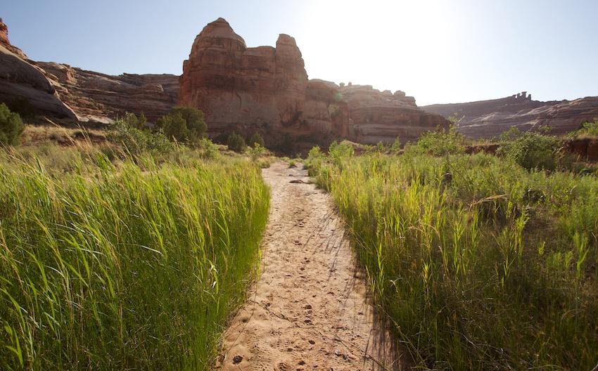 the-maze-canyonlands-74.jpg