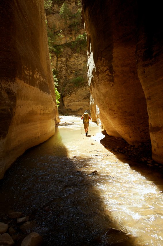 the-zion-narrows-10.jpg
