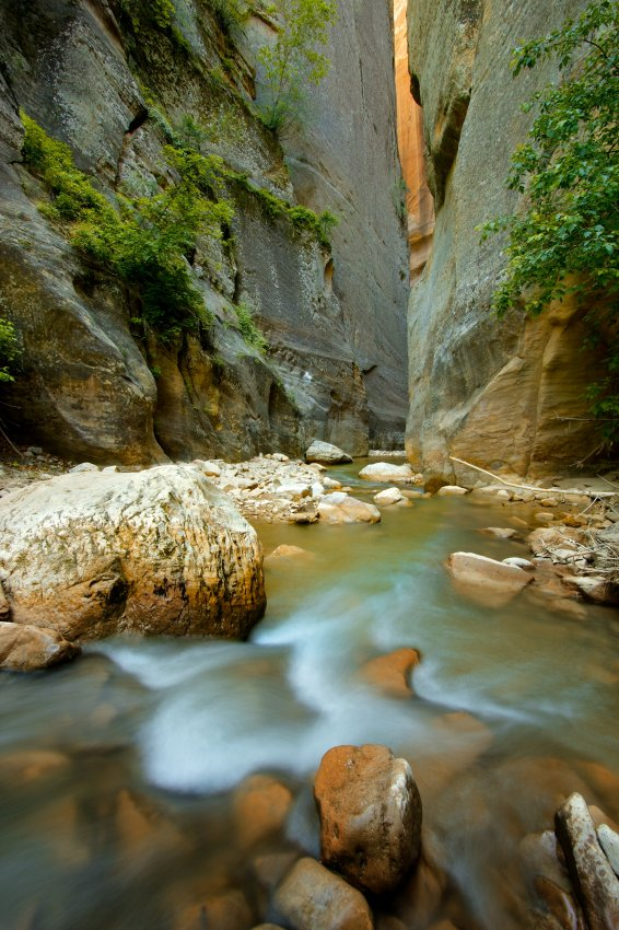 the-zion-narrows-13.jpg