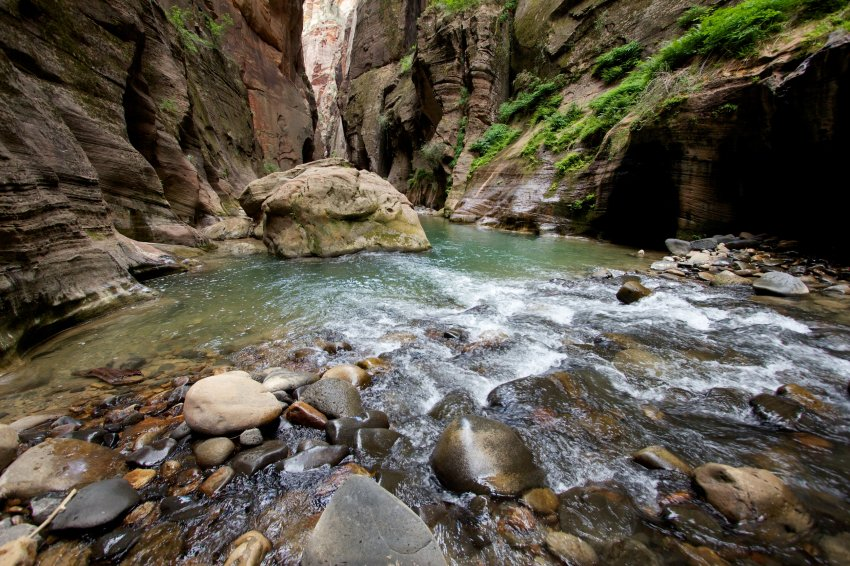 the-zion-narrows-42.jpg
