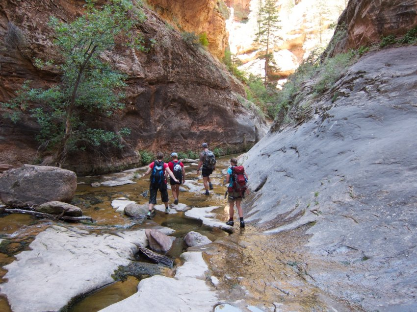 the-zion-narrows-52.jpg