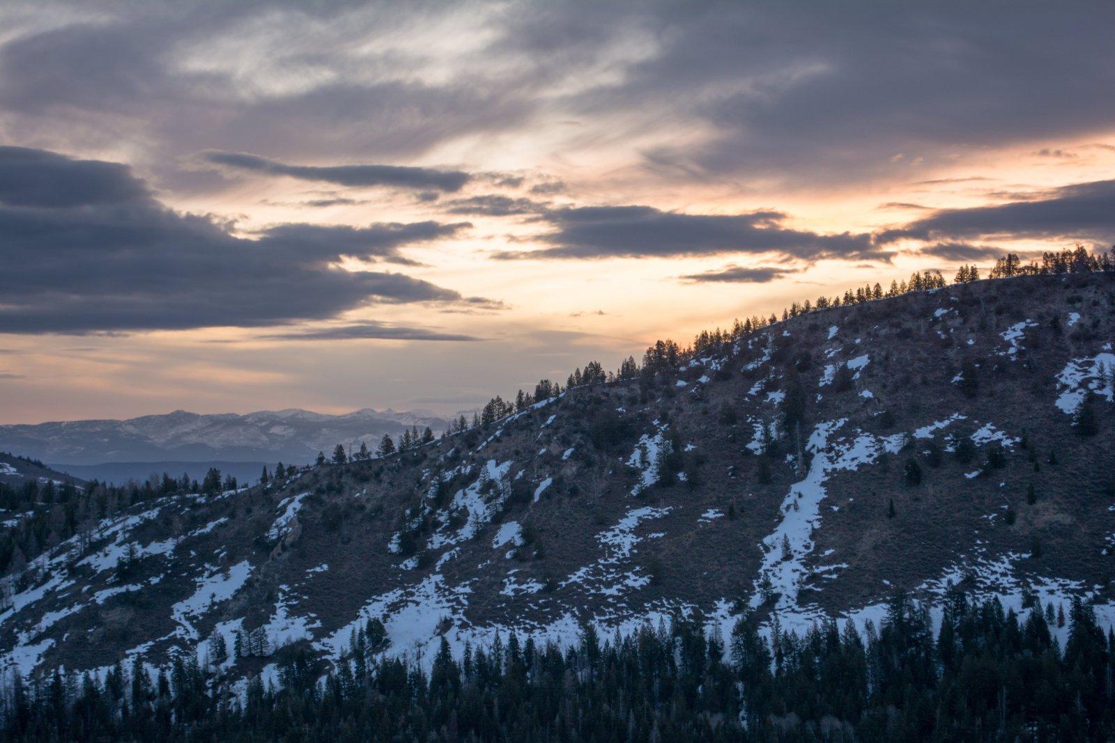 Timp Ridge Trail 4-20200170.jpg
