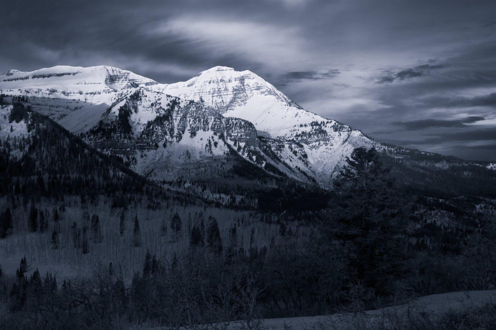 Timp Ridge Trail 4-20200222-bw.jpg