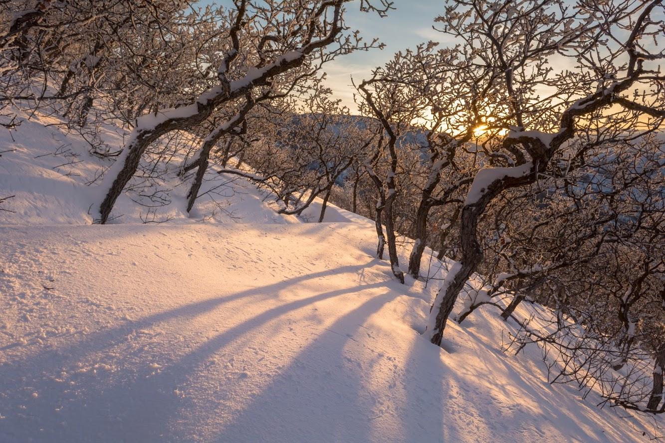 Traverse snow 2-7-20190011 (1).jpg
