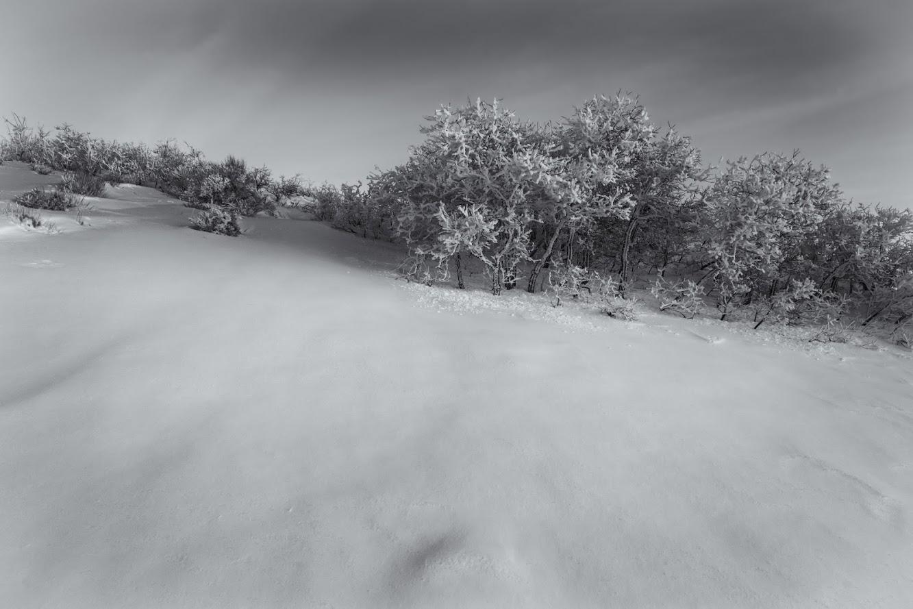 Traverse snow 2-7-20190043-bw.jpg