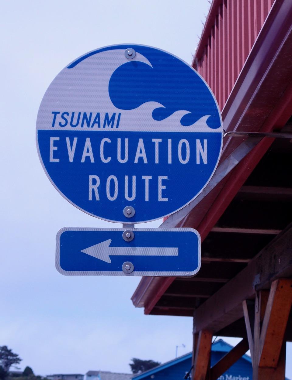 Tsunami-sign-P8131170.jpg