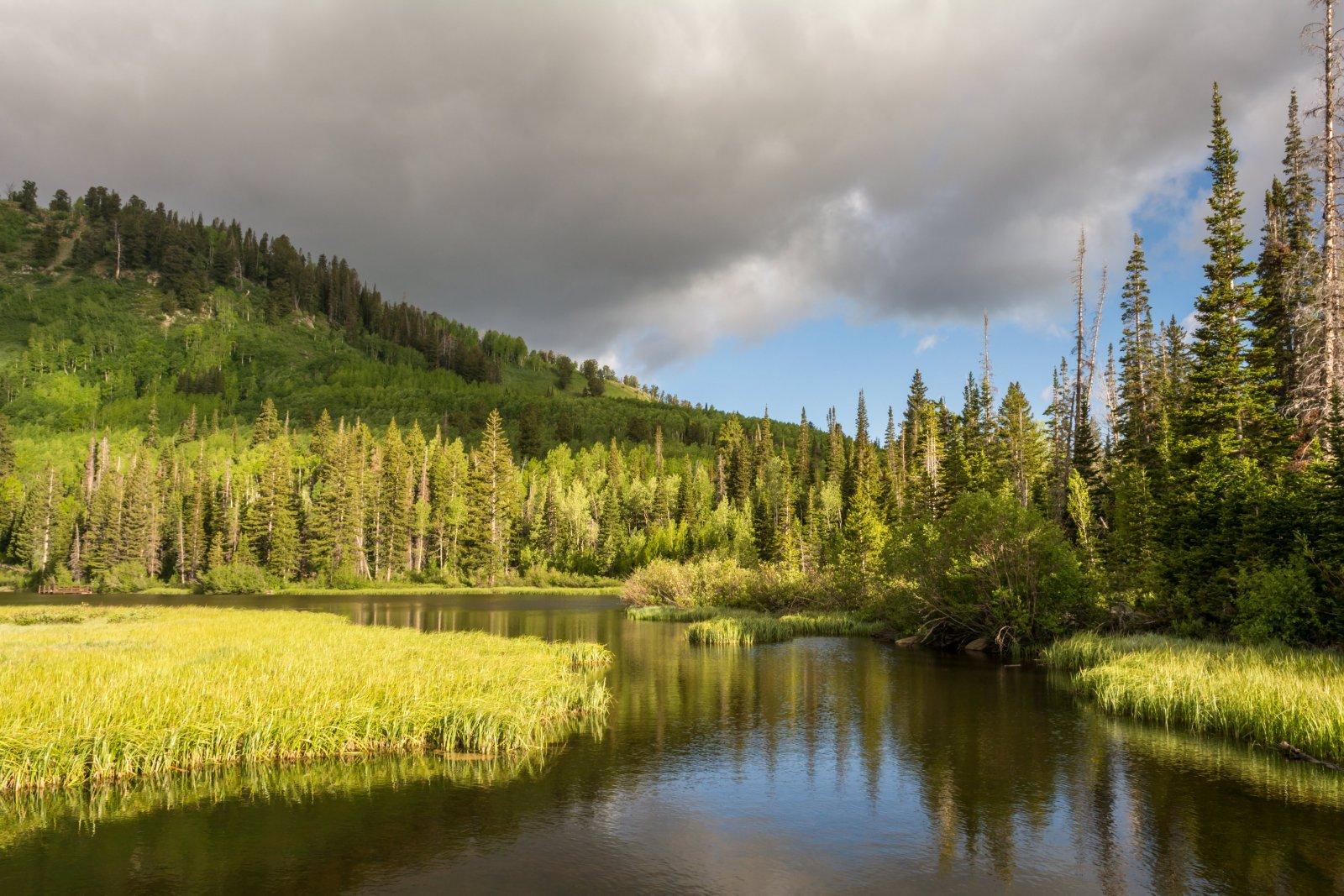 Twin Lakes 6-16-180009.jpg