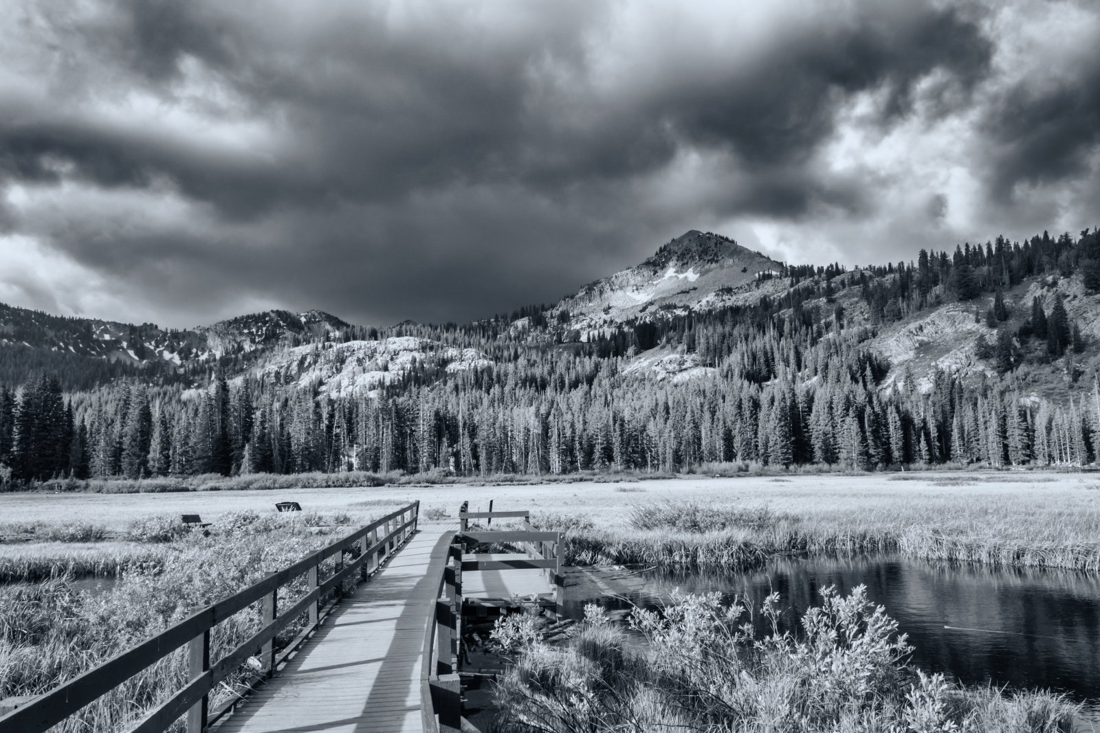 Twin Lakes 6-16-180012-bw.jpg