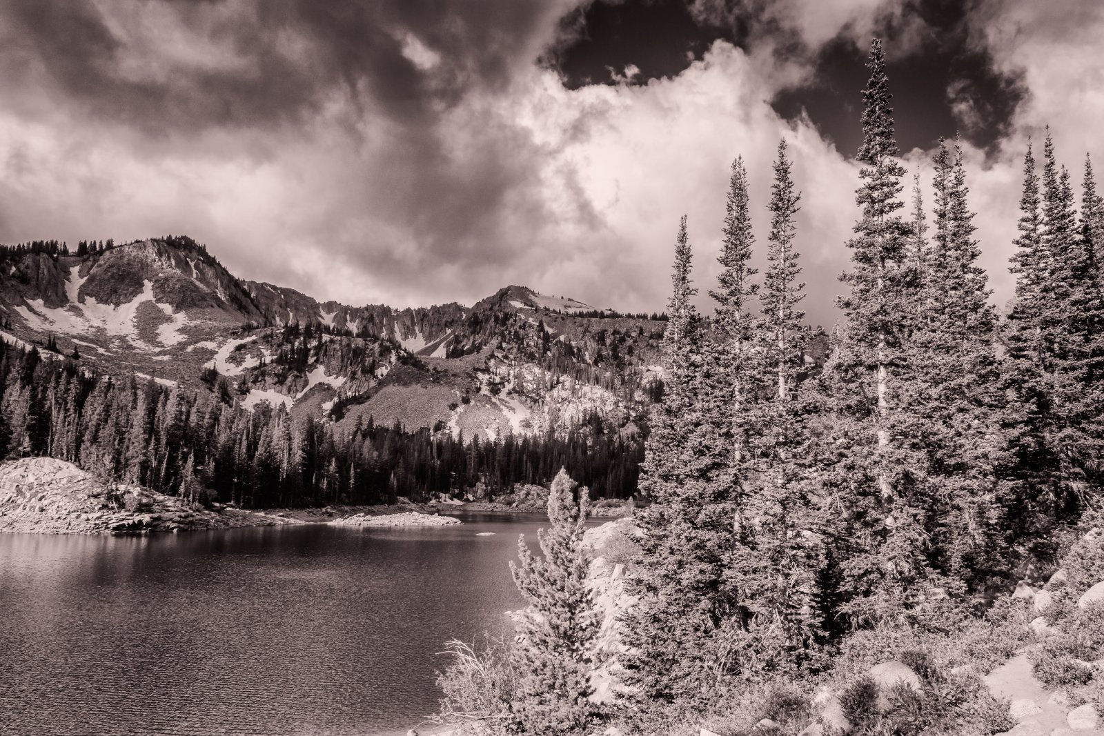 Twin Lakes 6-16-180048-bw.jpg