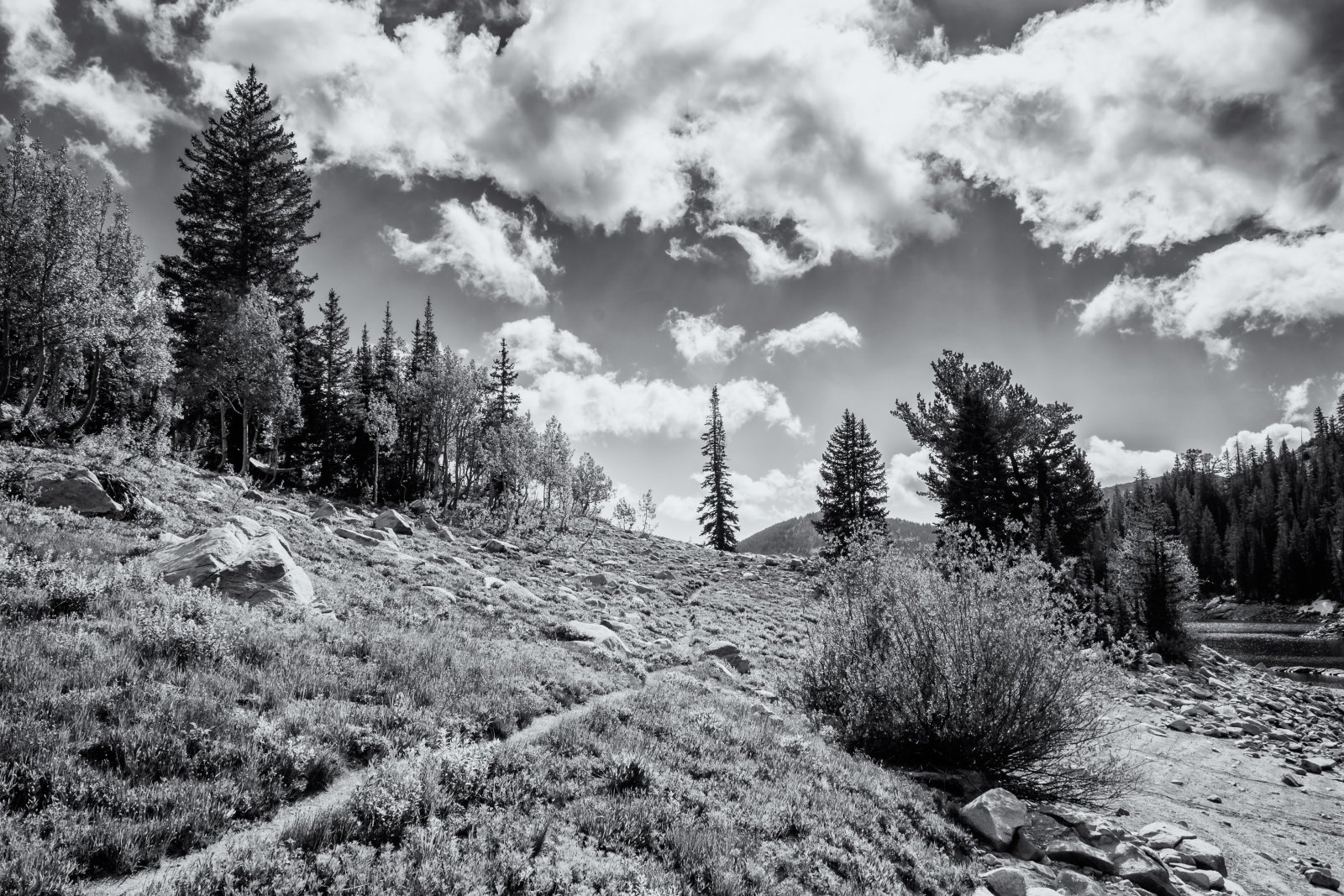 Twin Lakes 6-16-180129-bw.jpg