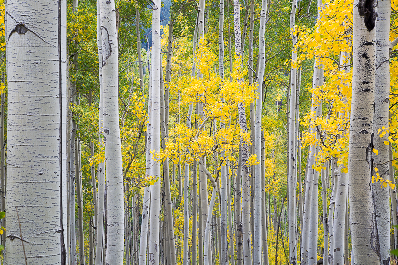 Utah Colorado-26.jpg