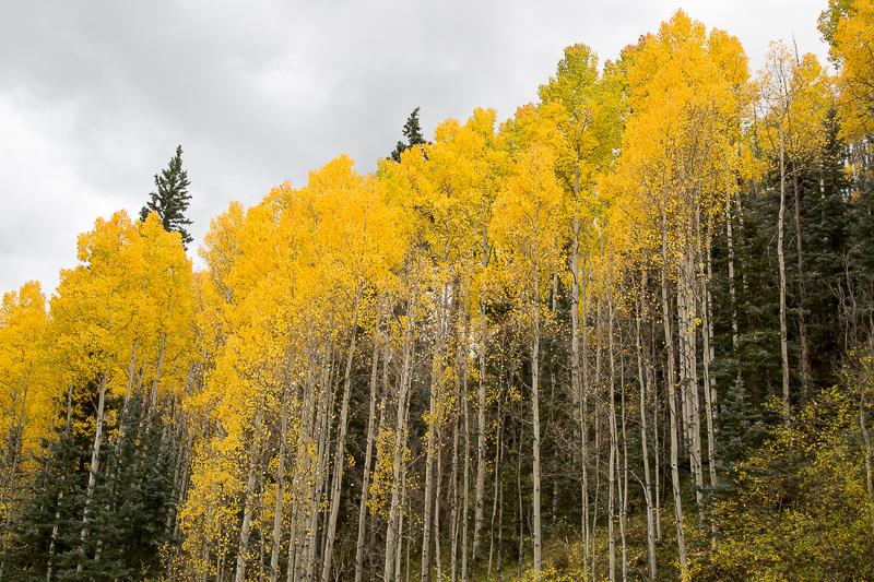 Utah Colorado-30.jpg