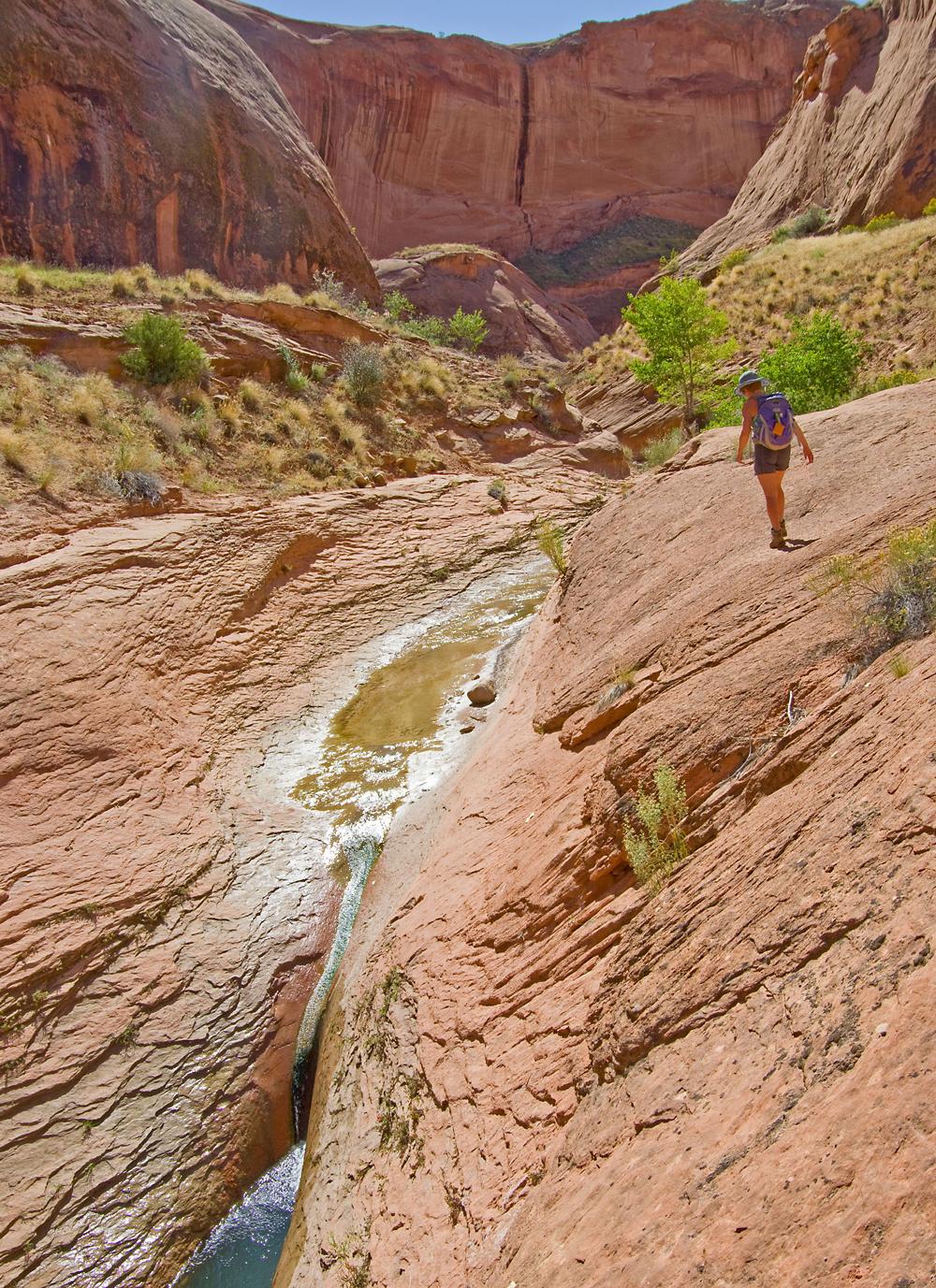 Utah2014091-copy.jpg