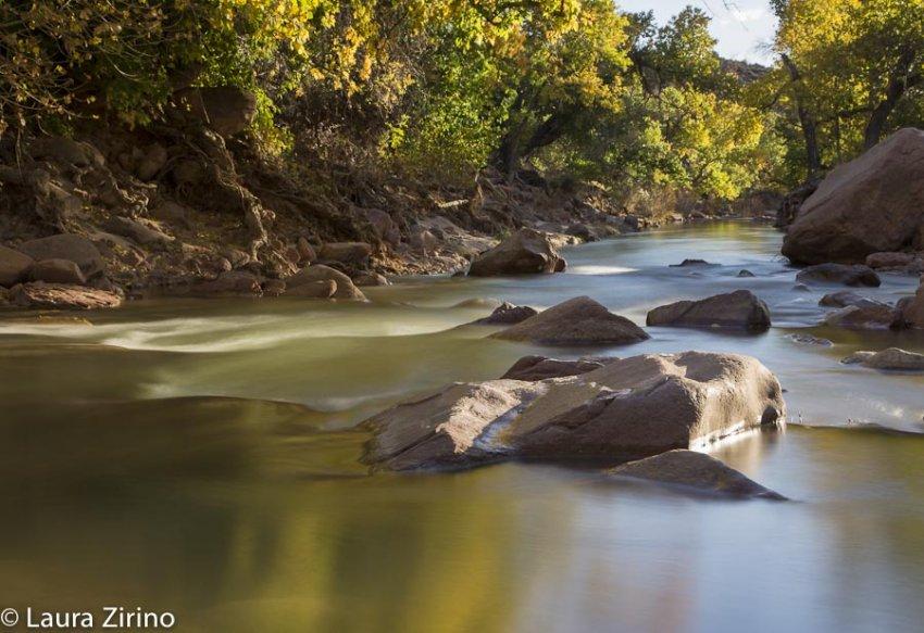 Virgin River Gold_.jpg
