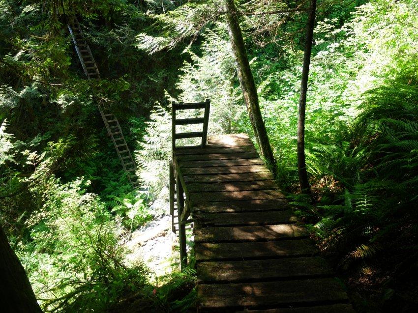 west coast trail 050.JPG