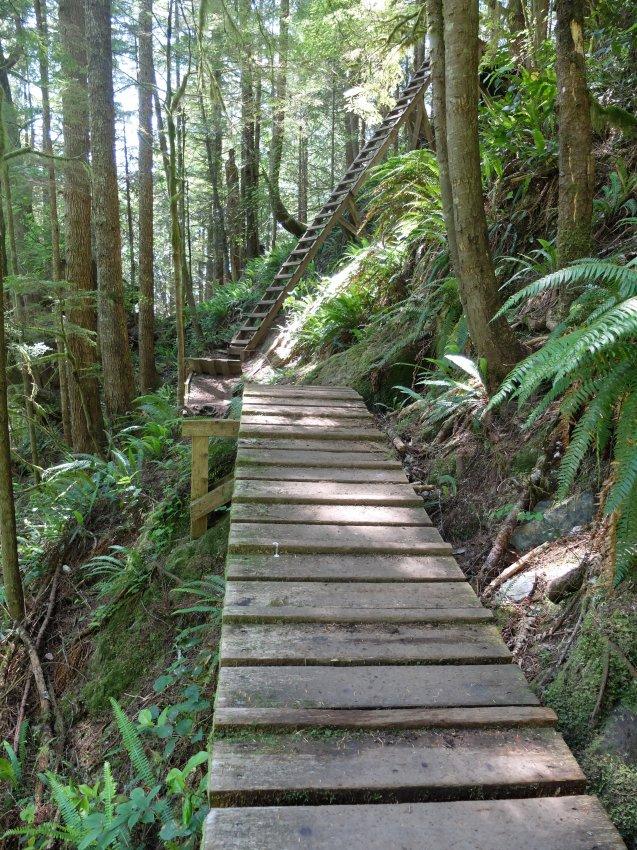 west coast trail 056.JPG