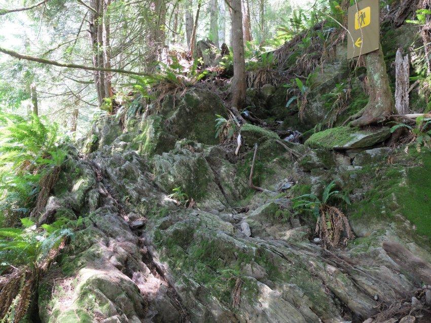 west coast trail 069.JPG