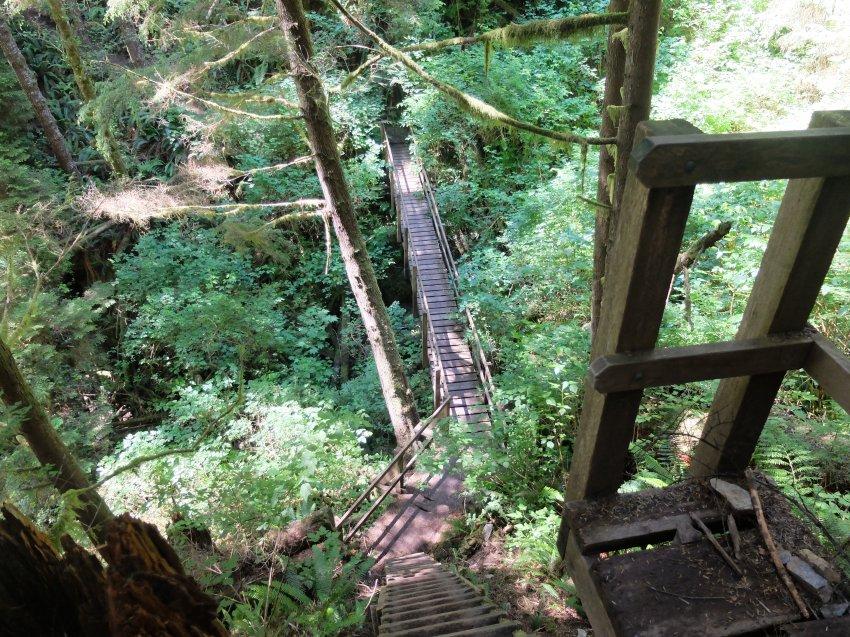 west coast trail 088.JPG