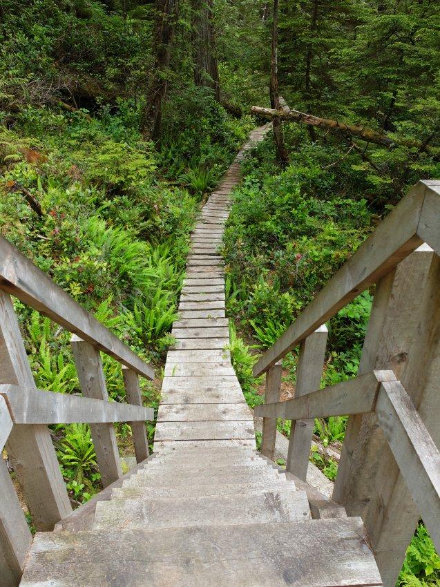 west coast trail 106.JPG