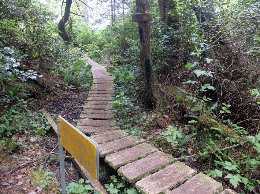 west coast trail 113.JPG