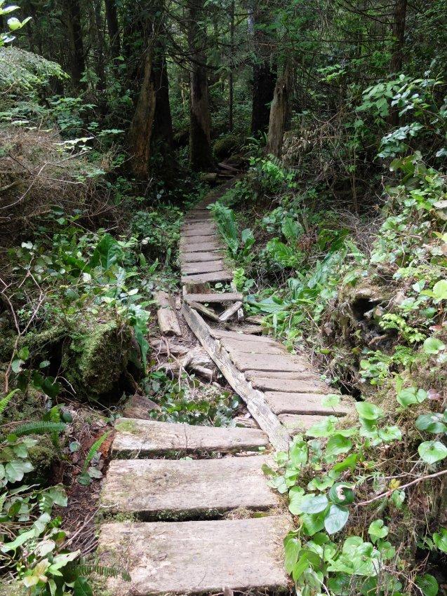 west coast trail 115.JPG