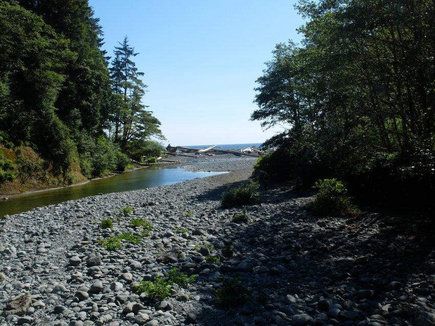west coast trail 144.JPG