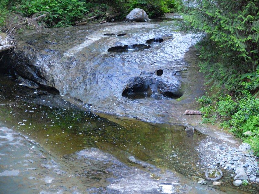 west coast trail 159.JPG