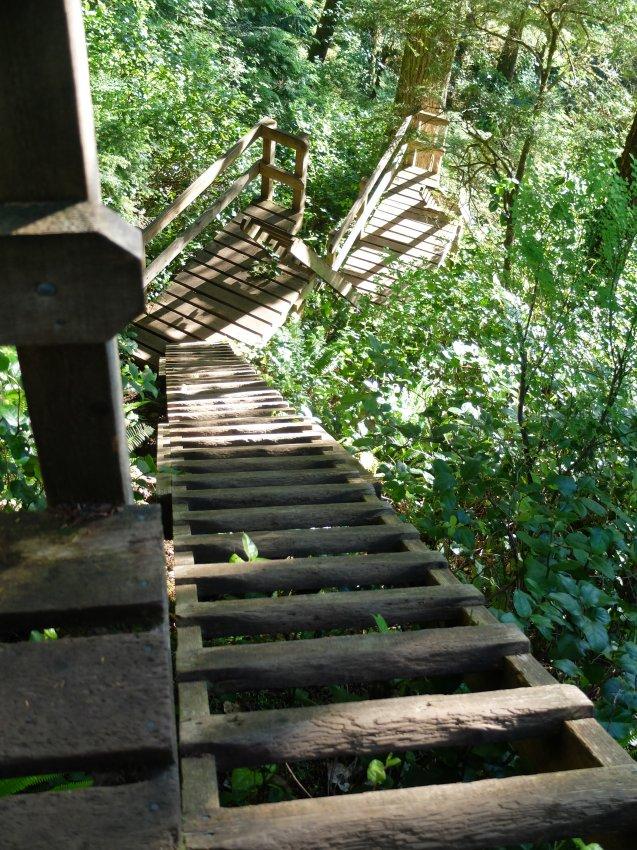 west coast trail 166.JPG