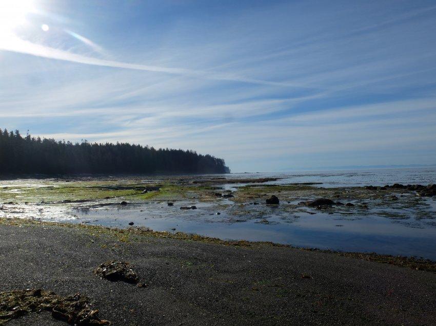 west coast trail 263.JPG