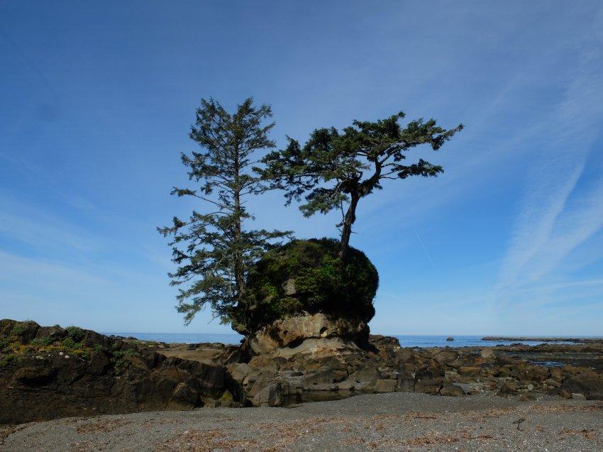 west coast trail 282.JPG