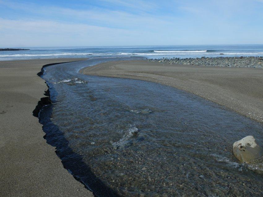 west coast trail 291.JPG