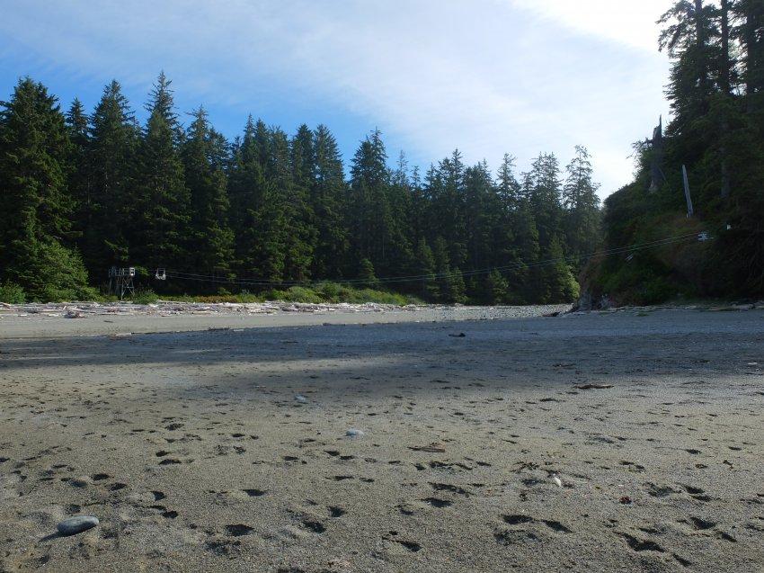 west coast trail 292.JPG