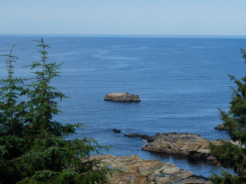 west coast trail 317.JPG