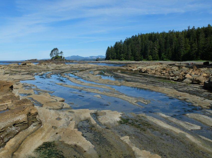 west coast trail 358.JPG