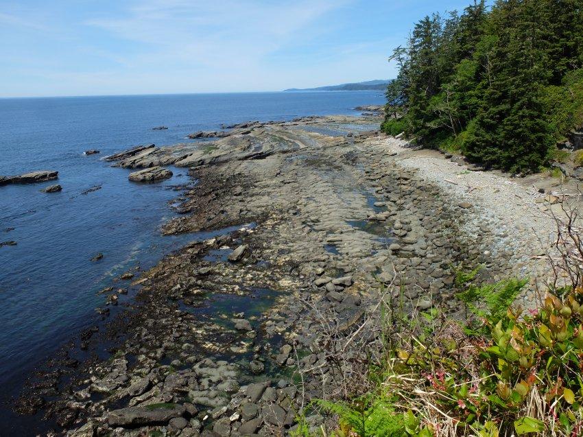 west coast trail 385.JPG