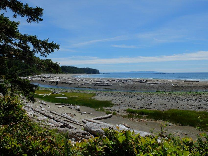 west coast trail 410.JPG