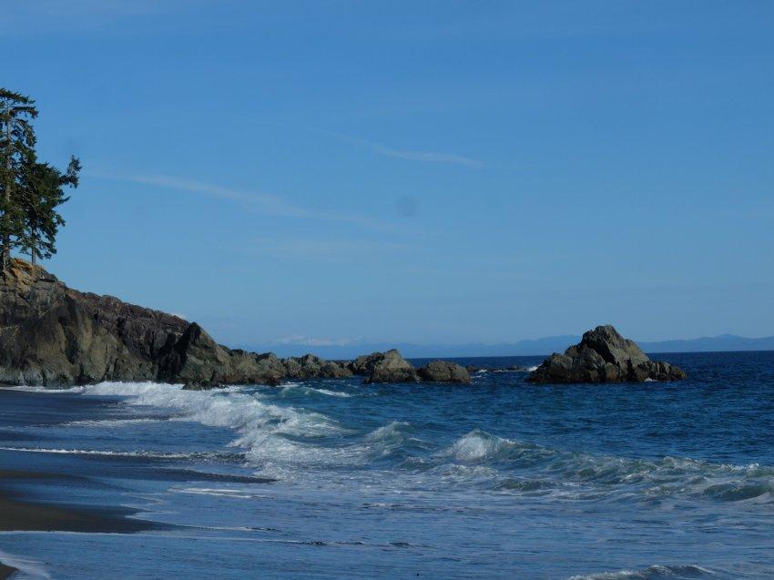 west coast trail 435.JPG