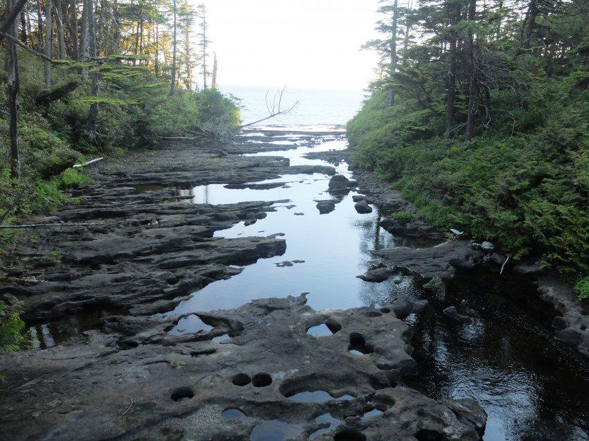 west coast trail 476.JPG