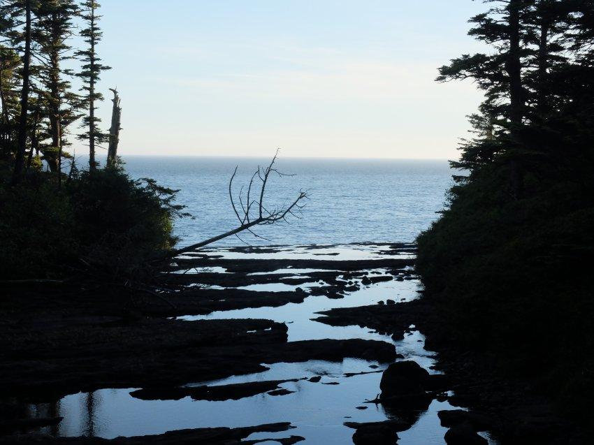 west coast trail 478.JPG
