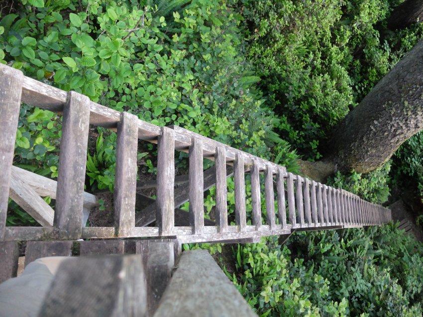 west coast trail 487.JPG