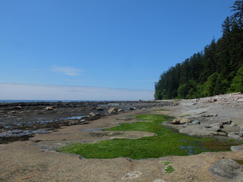 west coast trail 511.JPG