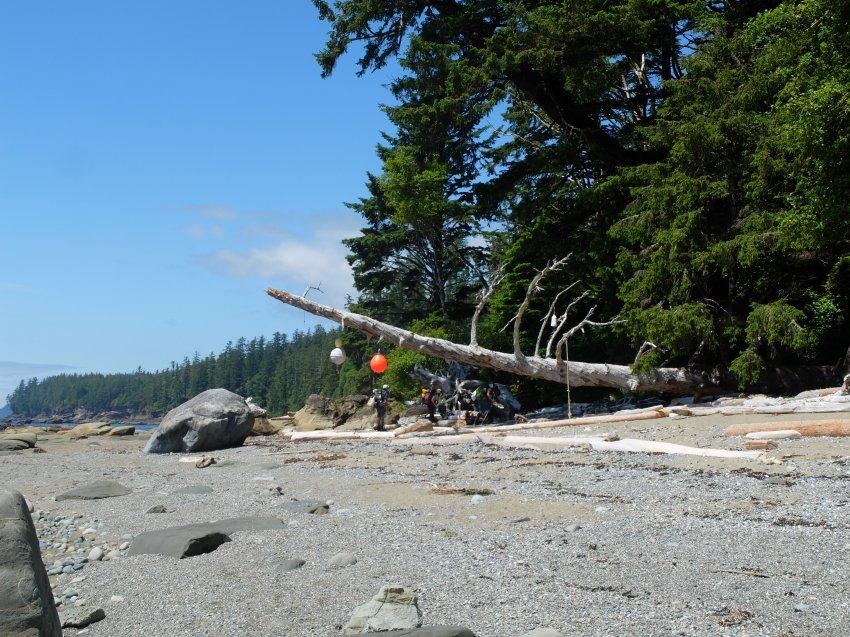 west coast trail 520.JPG