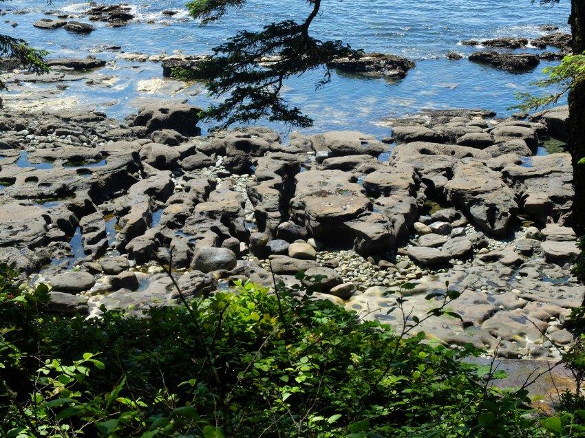 west coast trail 524.JPG